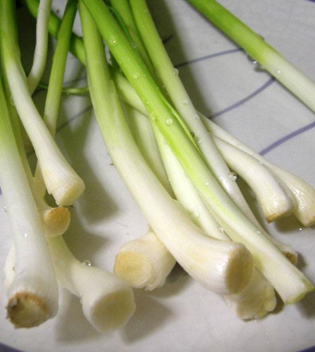 Cómo plantar ajos en casa