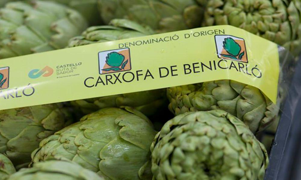 Alcachofa Benicarlo