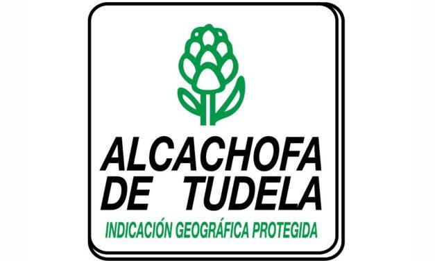 Alcachofa de Tudela