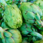 Recolección de la alcachofa