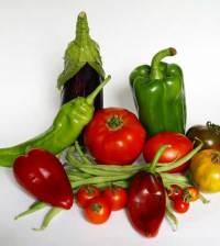 Bodegón de hortalizas