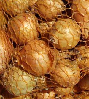 Bulbillos de cebollas