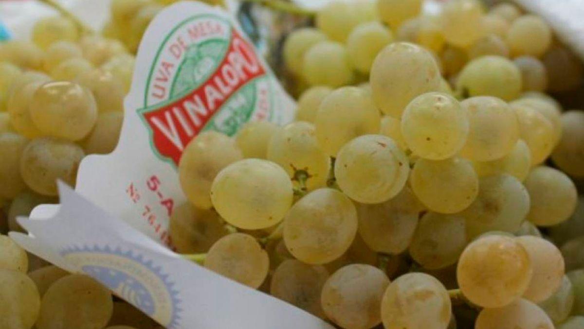 Caja de uva del Vinalopó