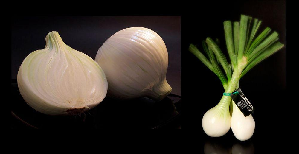 Cebolla y cebolla fresca