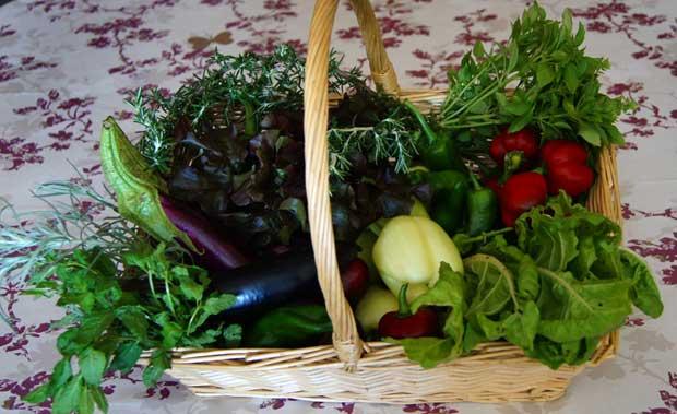 Cesta con frutas y hortalizas