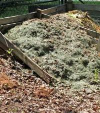 Compost en el huerto urbano