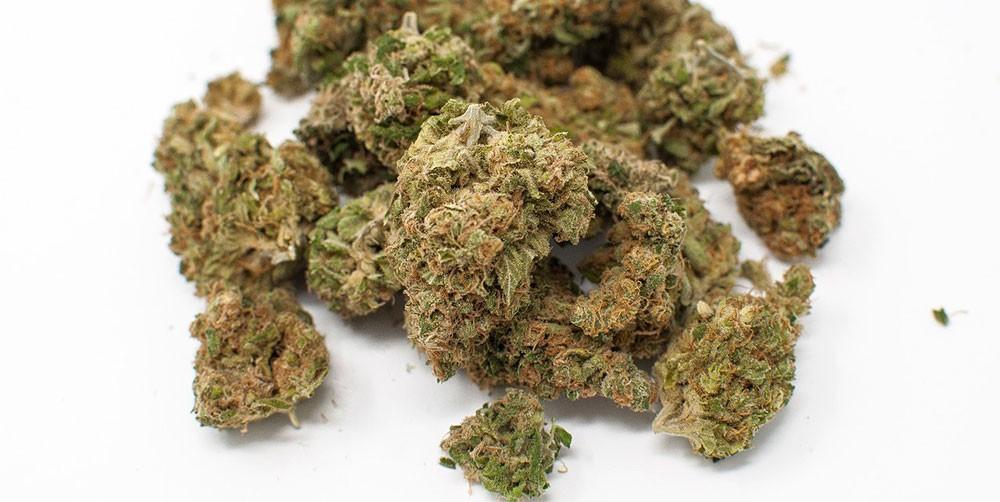 Cultivar marihuana en casa
