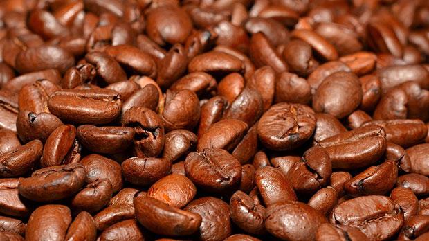 Enraizante casero a base de café