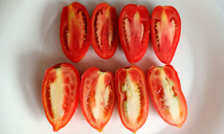 Fisiopatías del tomate