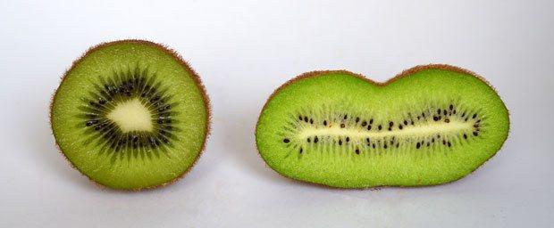 La recolección del Kiwi