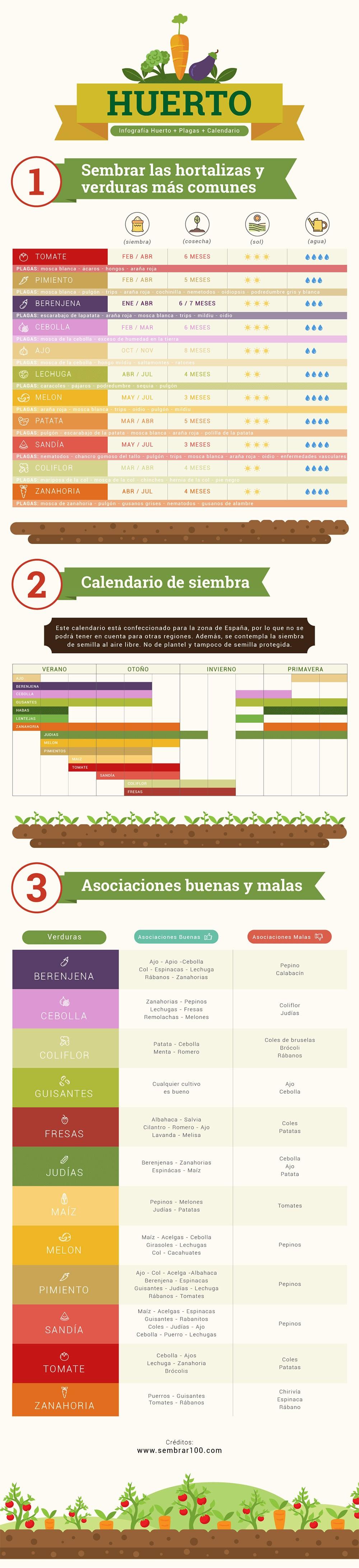 Infografía para empezar un huerto urbano