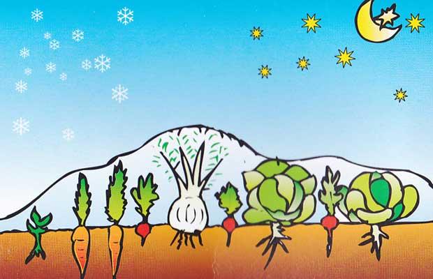 Mantas térmicas para cultivo