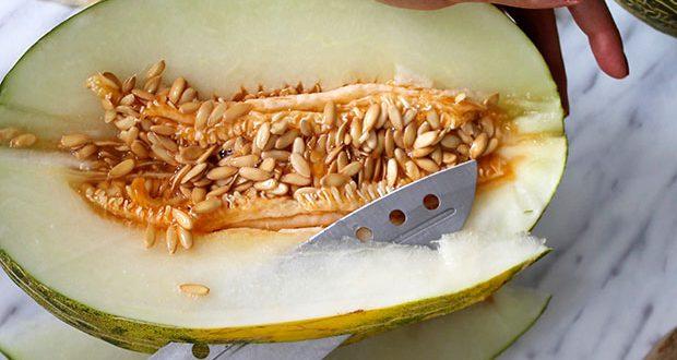Punto de recolección del melón