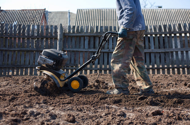 Motoazada trabajando en el huerto