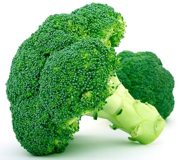 Informe técnico para el cultivo del bróculi