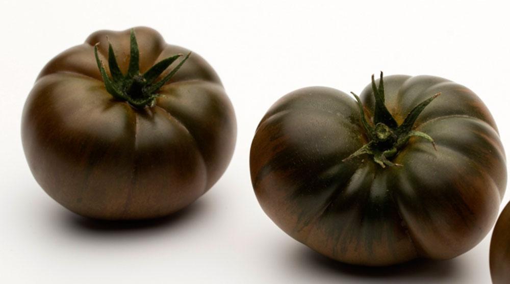 Tomates chocolate